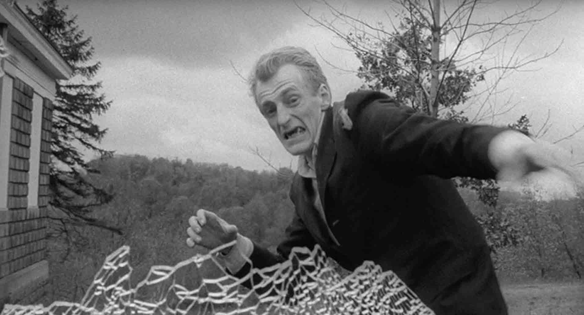 Image du film TRILOGIE ROMERO
